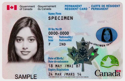 Application for a Permanent Resident Card (PR Card)