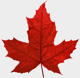 Apply for Canadian Citizenship - Adopted Person (CIT 0010)