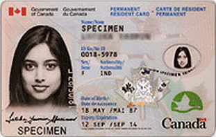 Permanent Resident Card Application